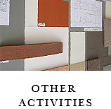 Other Actiivities